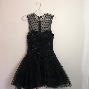 Rare Vintage Lillie Rubin Tule Dress
